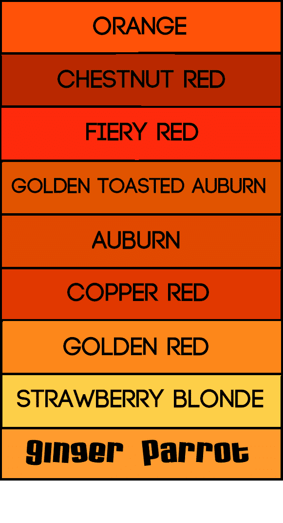Shades of ginger which are you ginger parrot Shades of orange colour chart