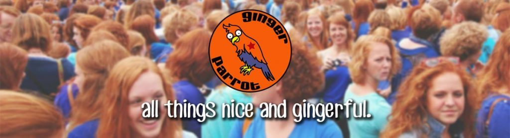 All-things-nice-and-gingerful---Ginger-Parrot