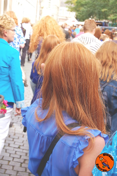 Backs of Peoples Heads - Redhead Days