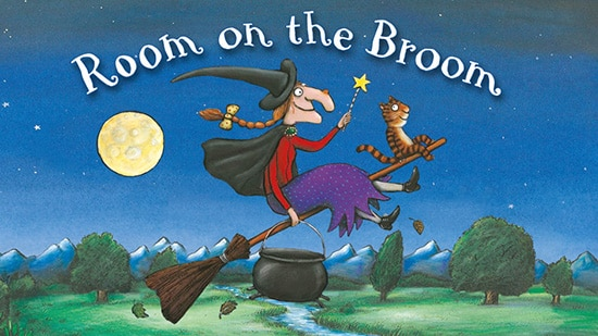 Room And The Broom Book
