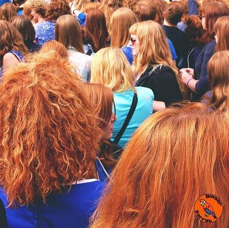 Redhead Days 2013