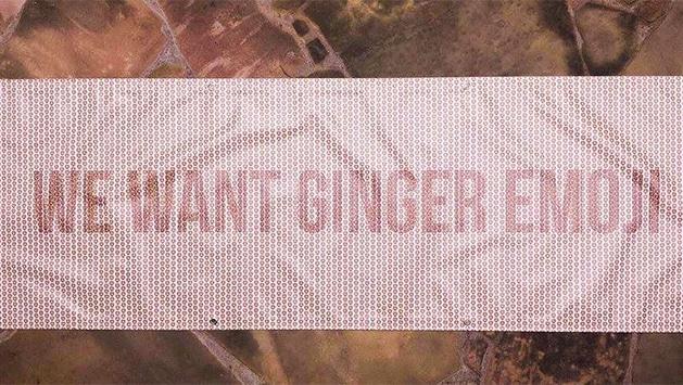 Ginger-emoji-banner