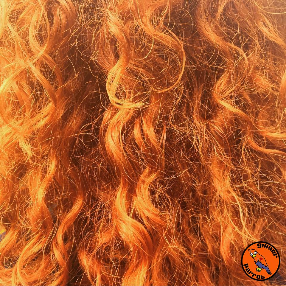 RHD2015-red-hair-curls-close-up