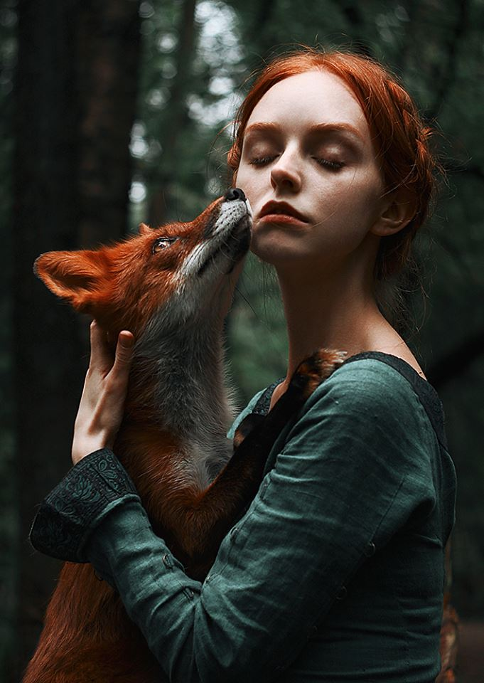 Redhead fox photography1