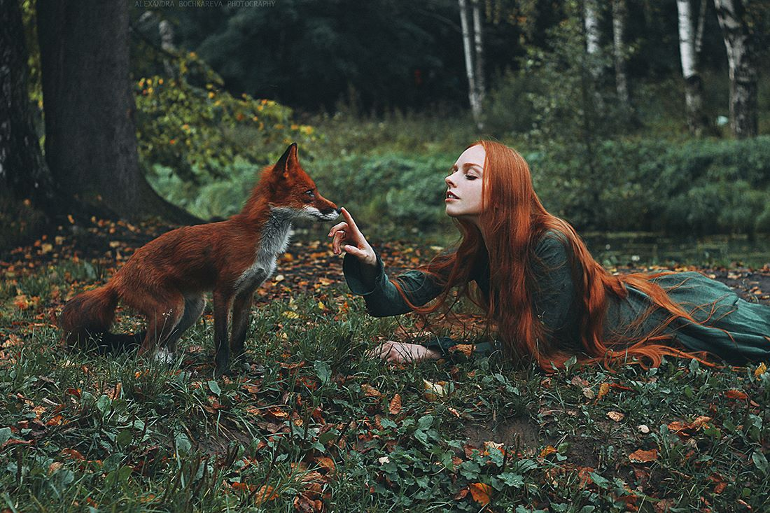 Redhead fox photography4