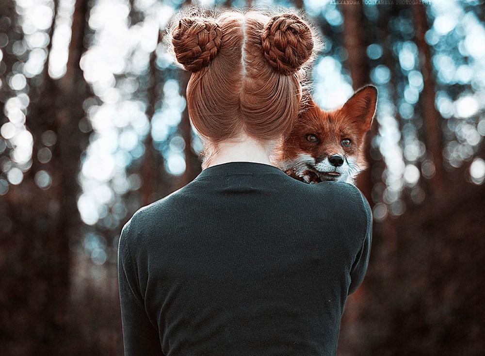 Redhead fox photography5